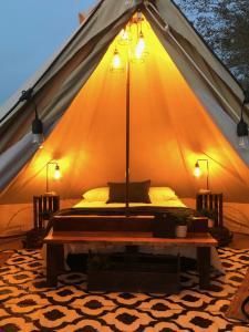 Luxury Camping Lake Louisa - Clermont