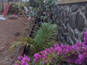 Ivy Orchids Villa - Lonavala, Vily  Lonavala - big - 41