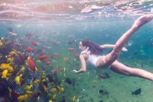 Four Seasons Resort Hualalai (8 of 47)