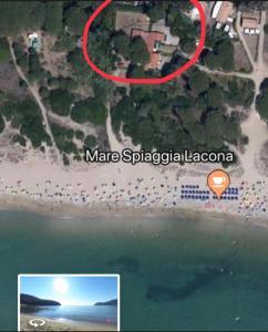 Monolocale sulla spiaggia di Lacona - AbcAlberghi.com