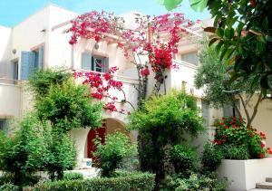 Hostels e Albergues - Nissia Kamares