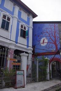 Auberges de jeunesse - 100 Cintra Street