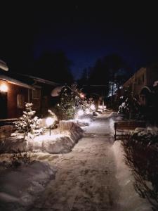 Lodge Shishma - Kaga