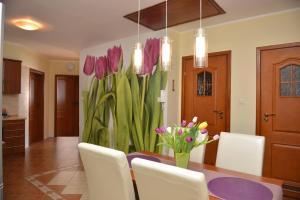 obrázek - Tulip House