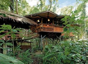 Tree House Lodge, Puerto Viejo