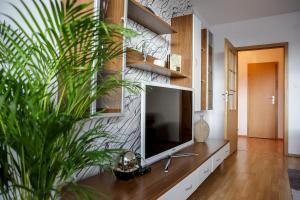 obrázek - SGL apartment Liptovska