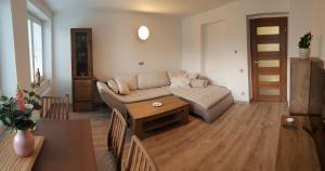 Apartmán U Labe - Apartment - Nymburk