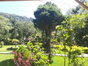 Hotel y Bungalows ecologicos M..