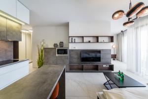 Apartamenty Rakowicka Deluxe Wawelofts