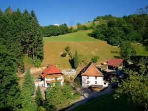 Steinmühle - Horben