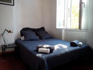 Appartement le Platane