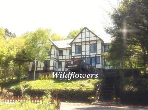 Auberges de jeunesse - Pension Wildflowers