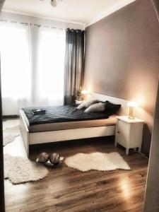 Mis Apartament Stary Rynek 50