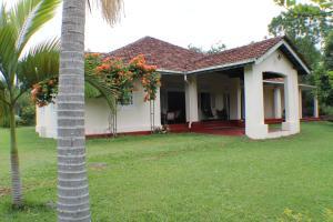 Moratuwa Kanda Estate - Ambulgama