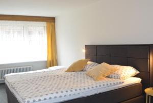 Hotel Badus - Andermatt