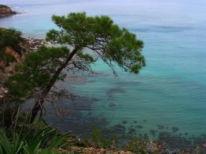 Koumasia Villas, Виллы  Коралловый залив - big - 40