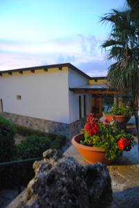 Villa Mola Bed And Breakfast - AbcAlberghi.com