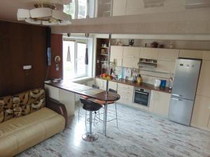 Apartament VIP on Shkolnyy Pereulok - Shamgulova