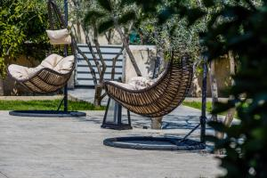 The Orange Garden Argolida Greece