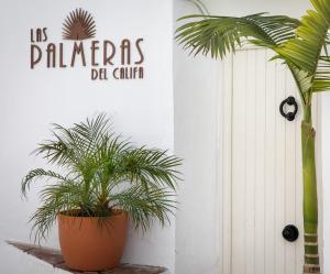Las Palmeras del Califa (2 of 25)