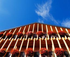 Albergo Rosa - Hotel - Predazzo
