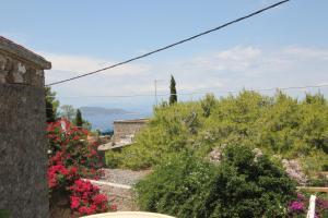 Aegina Dorfhaus Aegina Greece