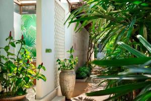 Avani+ Samui Resort (34 of 52)