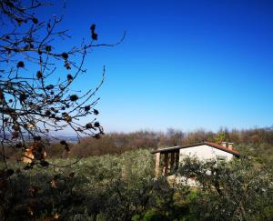 Agriturismo Bosco Magico - abcAlberghi.com