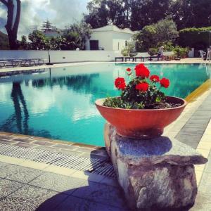Hotel Al Bosco - AbcAlberghi.com