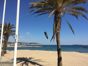 Cannes Terrace Beach Front & Sea view, Apartments  Cannes - big - 53