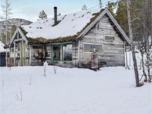Three-Bedroom Holiday Home in Bykle - Hotel