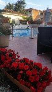 Hotel Splendid, Hotely  Diano Marina - big - 126