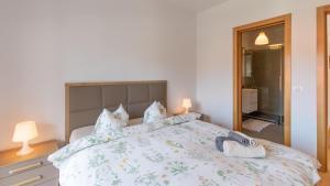 Central Comfort Suites, Apartmanok  Brassó - big - 17