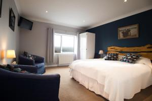 Sharamore House B&B, Bed and Breakfasts  Clifden - big - 6
