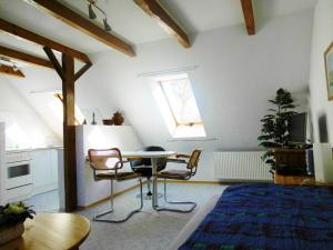 Ein-Raum Appartement 3, Gästehaus Urban - Gummlin