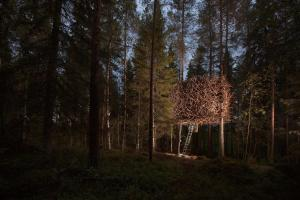 Treehotel (3 of 47)