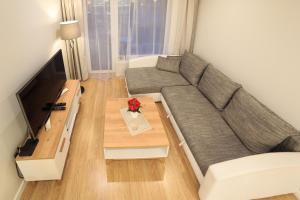 VIP apartaments Zalgirio 96
