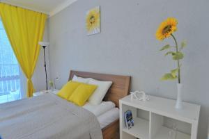 Słoneczny apartament Bracka