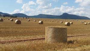 AGROTURYSTYKA RASZKÓW