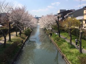 Suzume-An, Kúriák  Kiotó - big - 120
