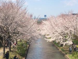 Suzume-An, Kúriák  Kiotó - big - 96