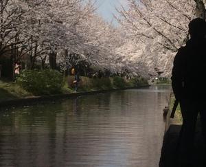 Suzume-An, Kúriák  Kiotó - big - 40