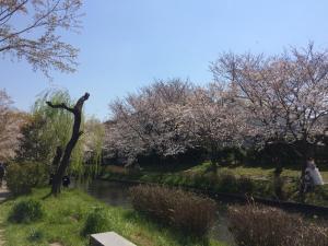Suzume-An, Kúriák  Kiotó - big - 166