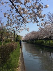 Suzume-An, Kúriák  Kiotó - big - 36