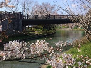 Suzume-An, Kúriák  Kiotó - big - 35