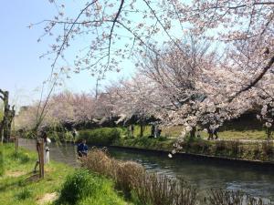 Suzume-An, Kúriák  Kiotó - big - 145