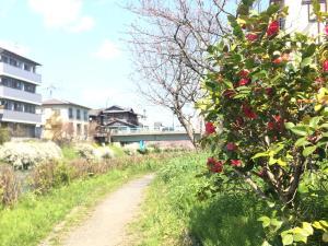 Suzume-An, Kúriák  Kiotó - big - 32