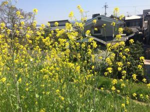 Suzume-An, Kúriák  Kiotó - big - 94