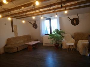 Auberges de jeunesse - Casa Iepurasilor