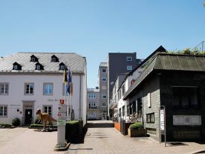 Holiday home Fabry Im Hof 2 - Holsthum